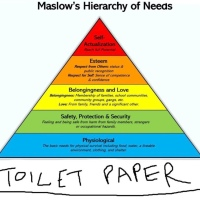 Australian Toilet paper crisis - Maslow's Hierarchy of Needs